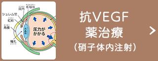 抗VEGF薬治療(硝子体内注射)